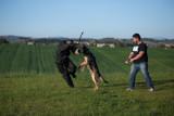 addestramento-difesa-1