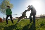addestramento-difesa-3